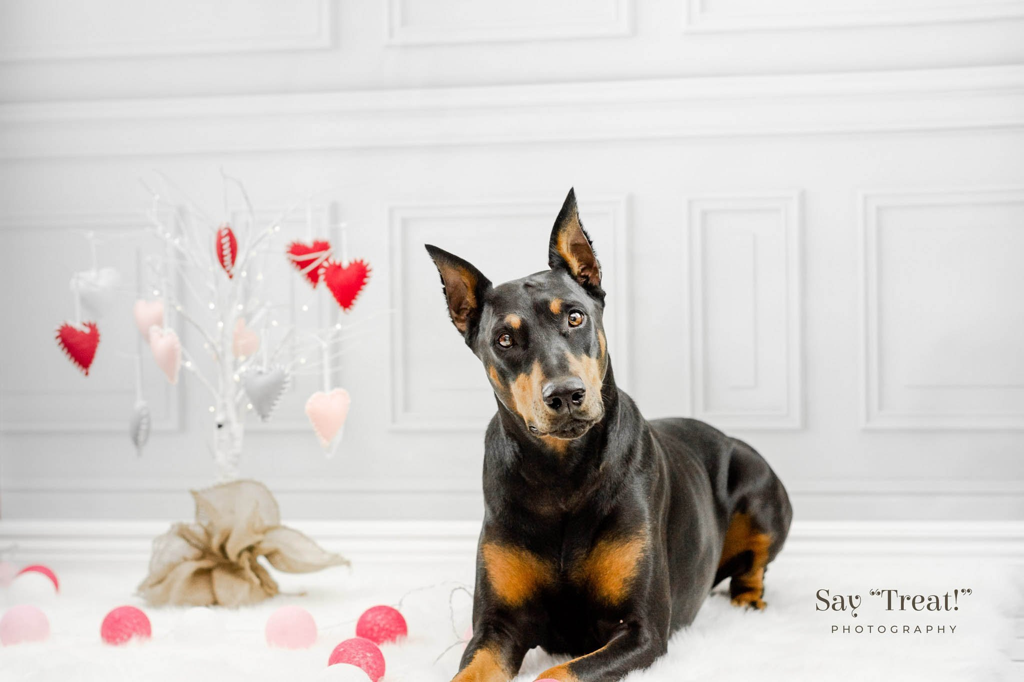 Valentine's Day Mini Sessions Sneak Peek